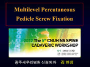 The 5th CNUH NS SPINE CADAVERIC WORKSHOP (2012, Gwang-Ju) 이미지